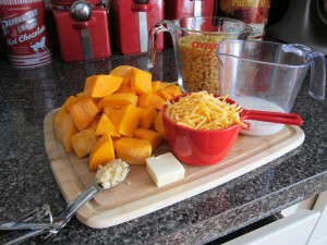 Butternut Squash Mac and Cheese (1)