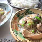 Crockpot Indonesian Chicken 8